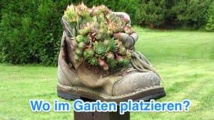 Aufstellung im Garten