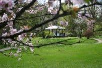 Gartenwhirlpool: Alle Tipps zur Aufstellung